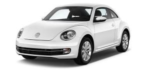 Beetle 2010-